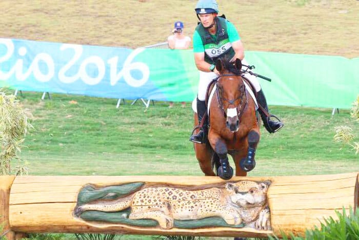 Rio 2016 Olympics event horse used PureFlax for healthy joints