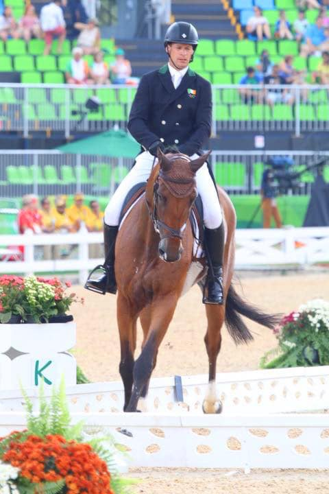 PureFlax was used by an event horse in the Rio 2016 Olympics